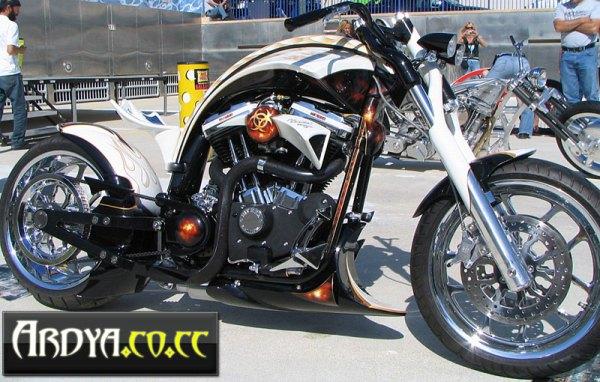la-fenice-de-custombike